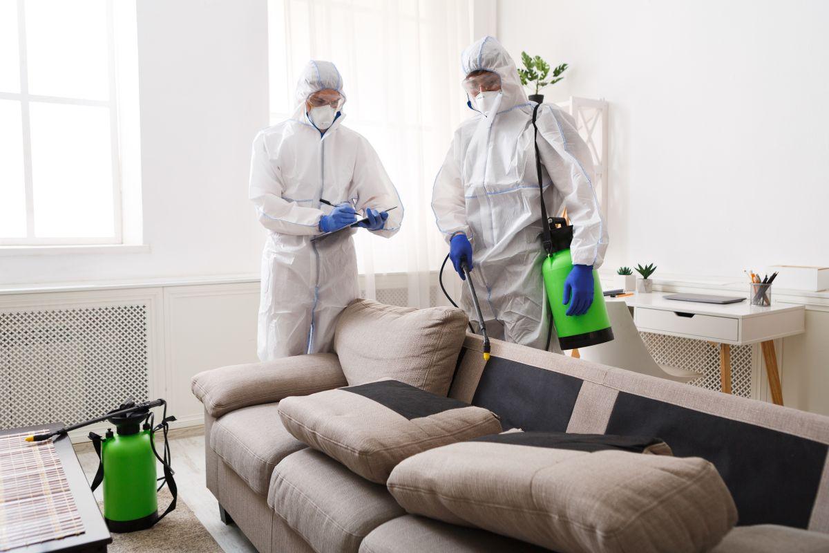 Kiedy warto wykonać ozonowanie pomieszczeń?